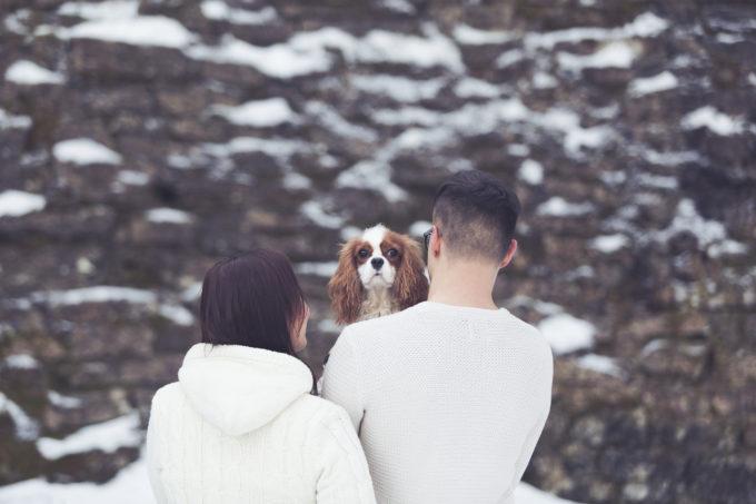 Lumine taust ja noored ja koer