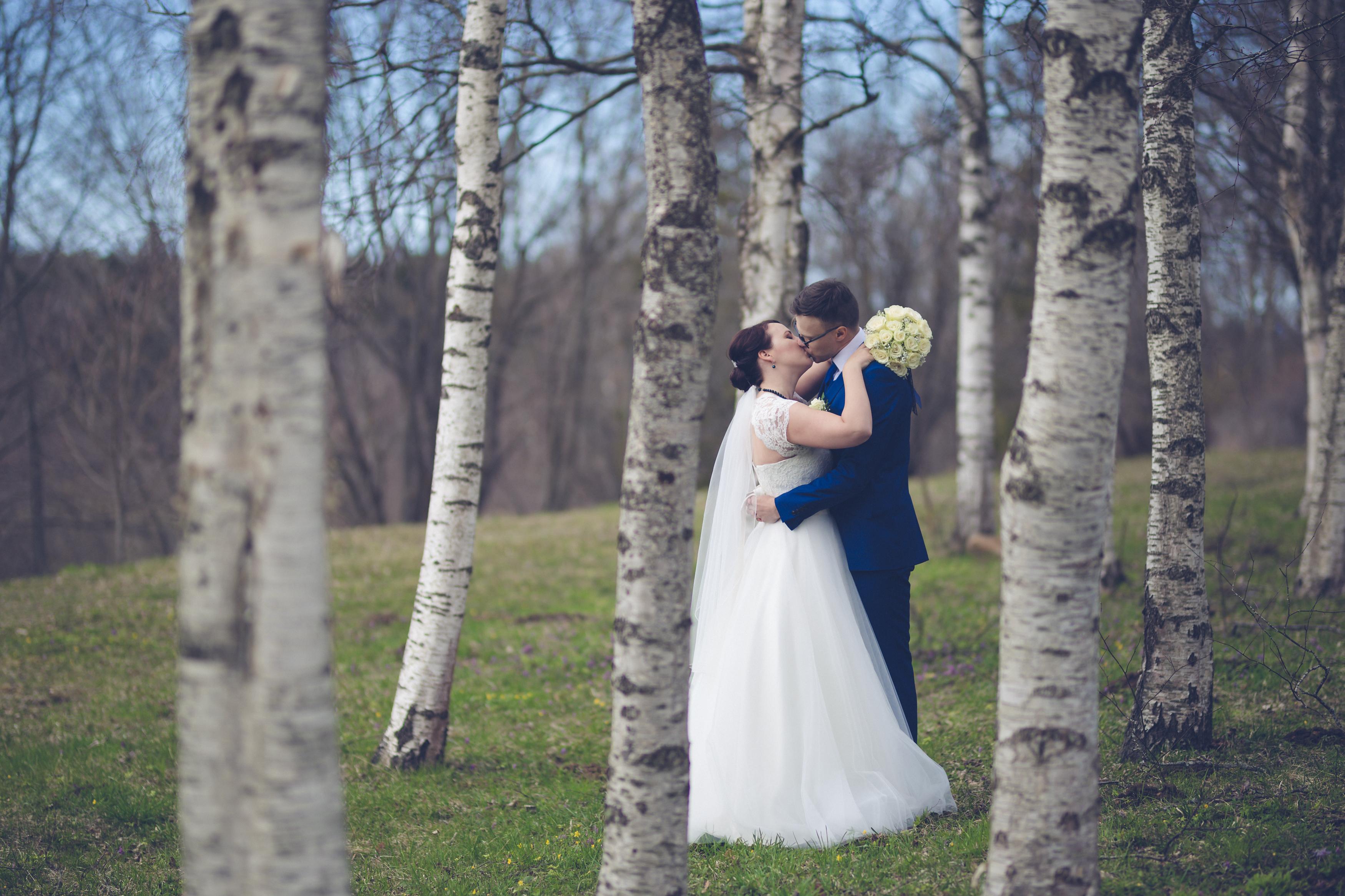 Kevadised pulmad metsas Toila pargis