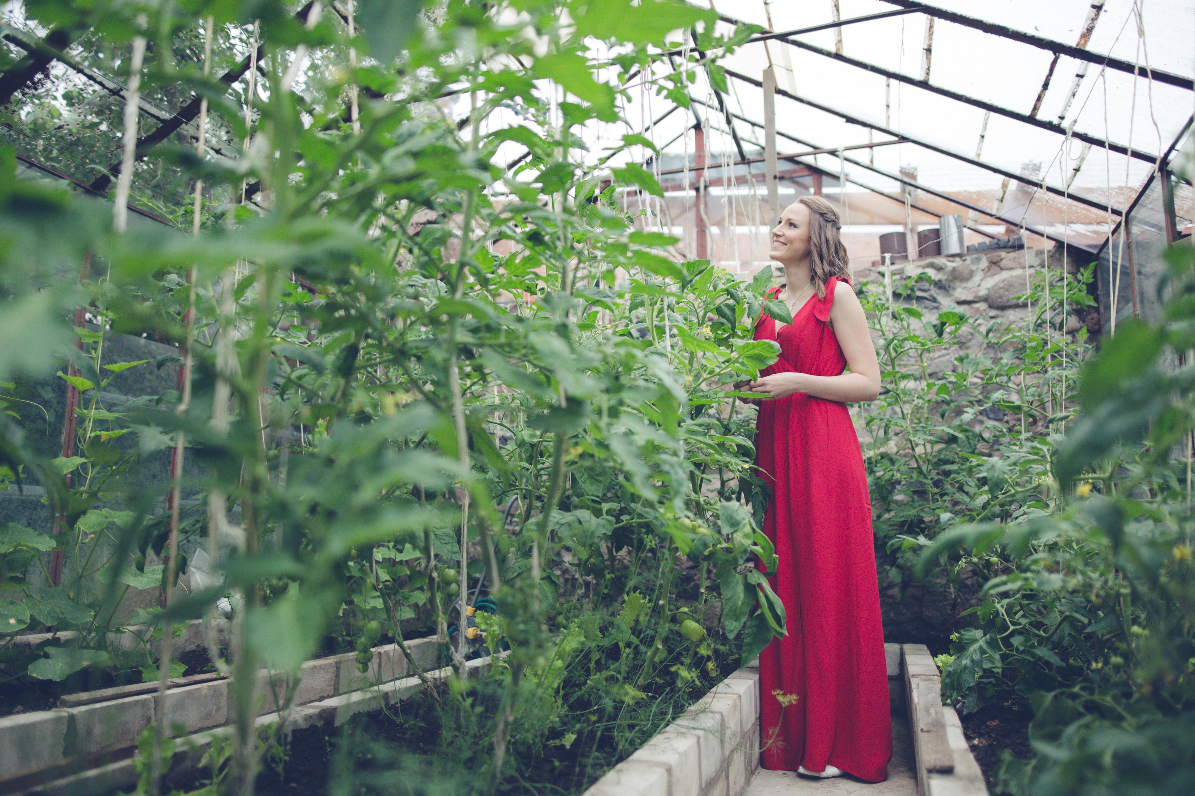 portree foto kasvuhoones
